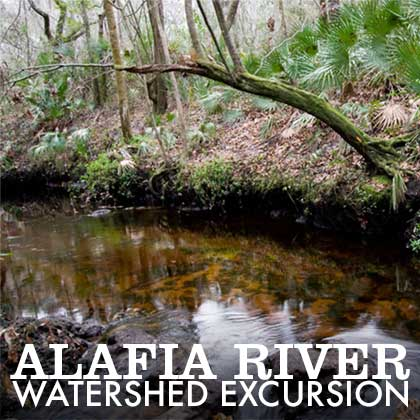 Alafia River Watershed Excursion graphic