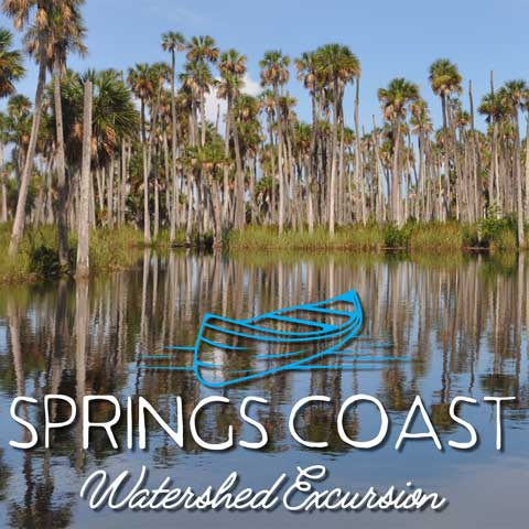 Springs Coast Watershed Excursion graphic