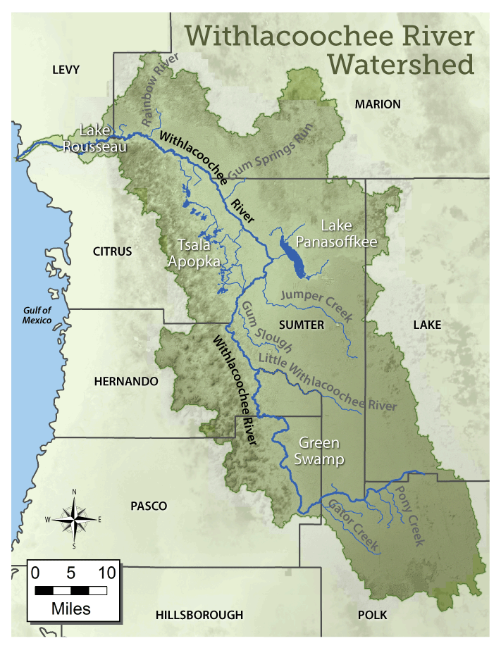 Florida Watershed Map.Withlacoochee River Watershed Initiative Swfwmd