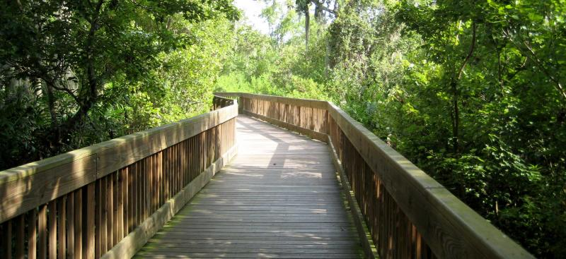 Sawgrass Lake boardwalk