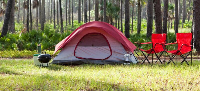 Camping tent in Florida woods