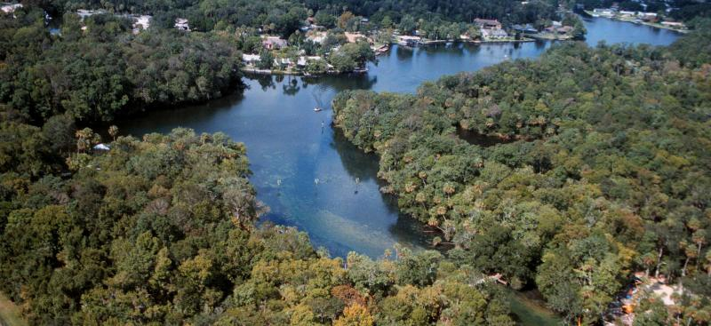 Homosassa Spring aerial view from 2001