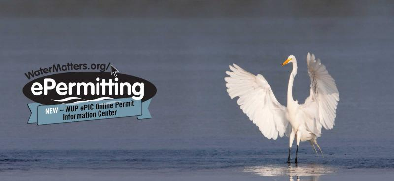 ePermitting logo with snowy white egret