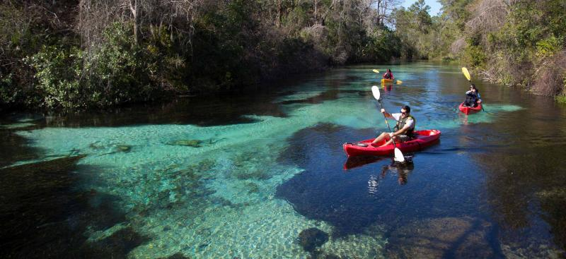 Kayakers on the Weekiwachee River