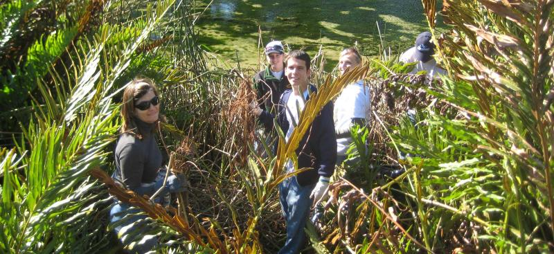Hillsborough River clean up volunteers