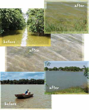 Before and after photos of Lake Persimmon