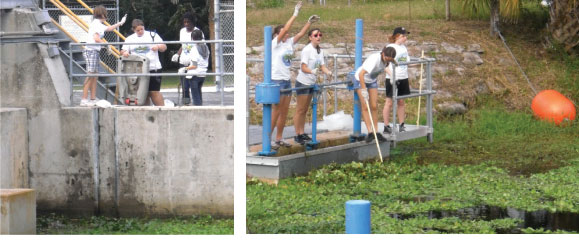 students at work during Coastal Cleanup Day