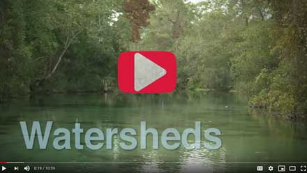 Watersheds video on YouTube thumbnail